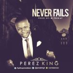 Never-Fails-Perez-King-Cover1.jpg
