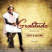 Gratitude - David Olaoluwa