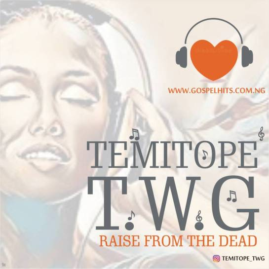 Temitope Artwork